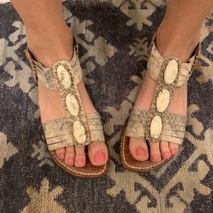 SAM EDELMAN Kaiya grey/tan snakeskin stone sandals
